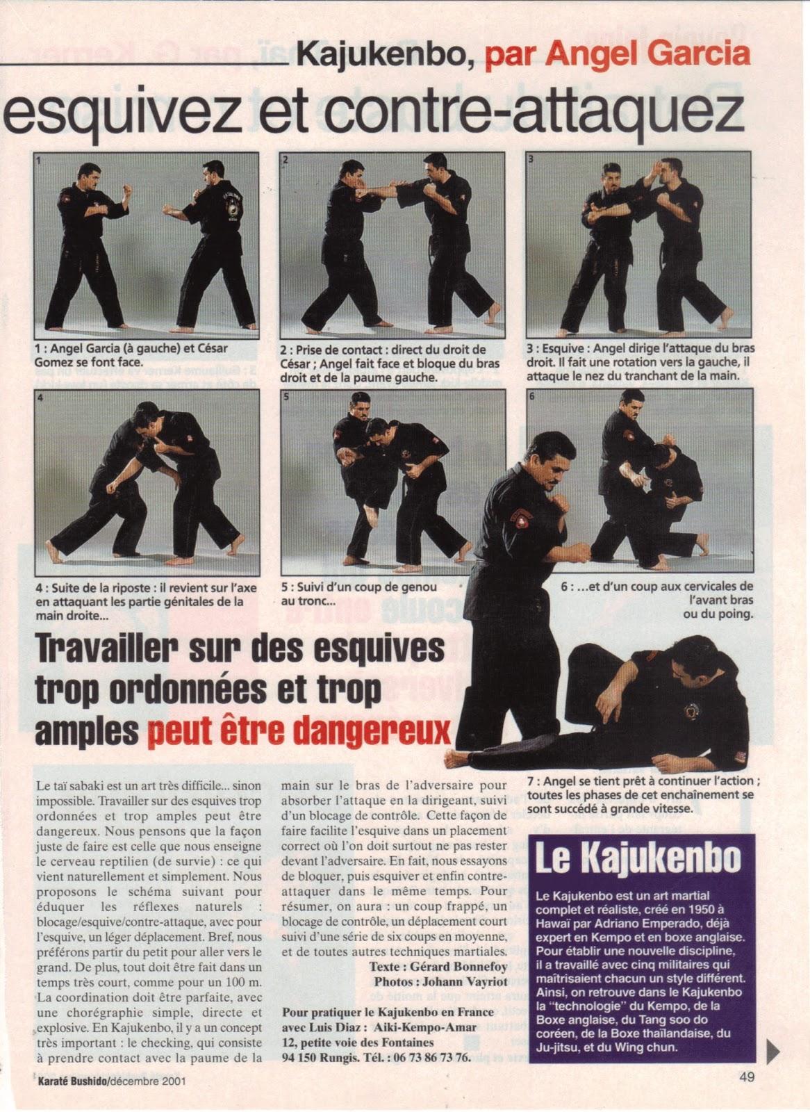 kajukenbo_-articulo-karate-bushido